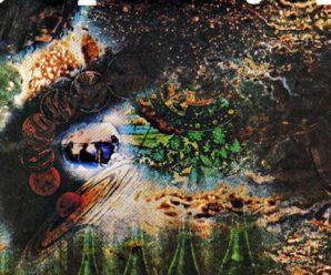 Pink Floyd – 1968 – A Sucerful Of Secrets